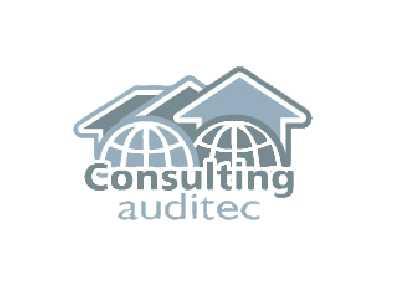 Consulting Auditec
