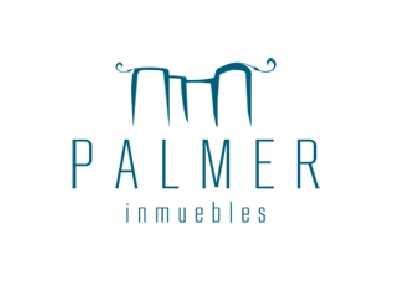 Jose Miguel Palmer Valls
